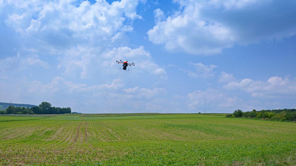 HEIGHT TECH INDIVIDUAL Trichogramma Dropping Drohne im Flug über eine Wiese